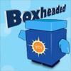 Boxheaded
